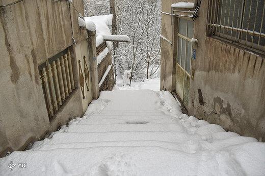 بارش برف در فشم