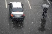 تصاویر | بارش برف تهران را زیبا کرد