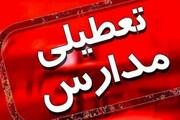 فیلم | توضیحات سخنگوی آموزش و پرورش تهران درباره تعطیلی مدارس
