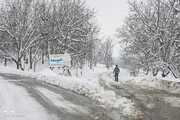 ببینید | گزارش اصغری از سردترین سرمای یک دهه گذشته که جمعه به تهران میرسد