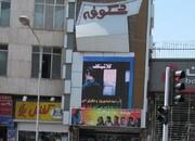 شکوفه به جشنواره فیلم فجر پیوست