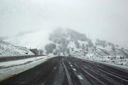 فیلم | وضعیتی که بارش برف برای جاده چالوس به وجود آورد