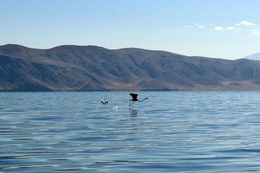 دریاچه ارومیه؛ از بحران خشک شدن تا رونق گردشگری