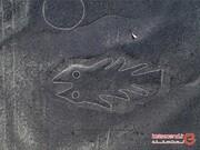 راز نقاشیهای پنهانی که در عمق زمین کشیده شده بودند، کشف شد! +تصاویر