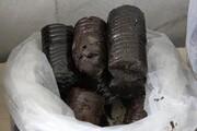 قاچاقکشی به روش جدید: مردی با ۶۳ کیلو تریاک در کوله پشتیاش بازداشت شد