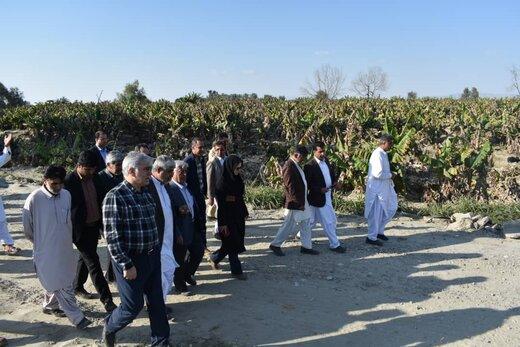 خسارات سیل به بخش کشاورزی سیستان و بلوچستان جبران می شود