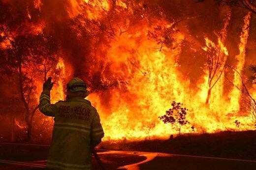ببینید | فرار آتشنشانان استرالیایی از  گسترش آتش
