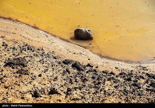 آسیبهای محیط زیستی میدان نفتی آب تیمور در خوزستان