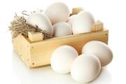 راهحلی ساده برای مصرف ایمن تخممرغ