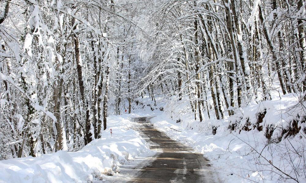 از شمال تا جنوب  برای سفر زمستانی در کشور ۴ فصل ایران / آخر هفته کجا برویم؟ + تصاویر