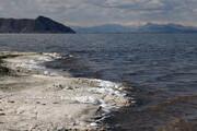 گیاهان دارویی دریاچه ارومیه را احیا میکنند؟
