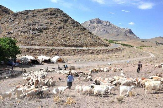 مرمت سالانه بیش از ۴۰۰ کیلومتر از ایلراههای عشایری استان کرمانشاه