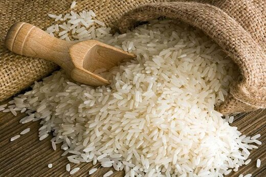 مقام آلمانی: خرید اقلام غذایی از ایران نباید تحریم باشد
