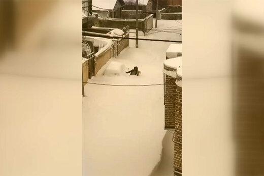 فیلم | دفن شدن خودروها زیر برف در خلخال