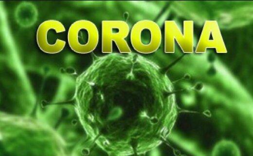 وزارت بهداشت: ۲۴ کشور جهان درگیر ویروس کرونا هستند