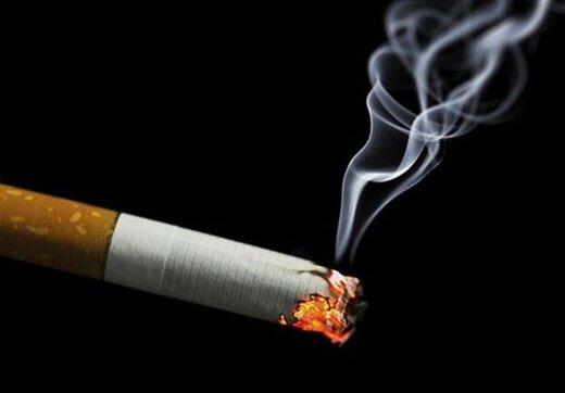 جریمه ۵۰ هزار تومانی برای استعمال هر نخ سیگار در یک مجتمع تجاری تهران/ عکس