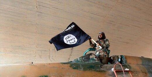 داعش کرونا را عذاب الهی خواند