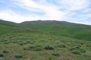 اجرای عملیات بیولوژیک مراتع در استان سمنان