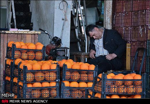 میادین میوه و ترهبار تهران در نوروز با قیمتهای مصوب کار میکنند