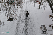تداوم بارش برف در تبریز