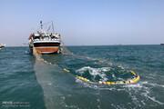 ورود دادستان بندرعباس به ماجرای صید ترال و نابودی مرجانها