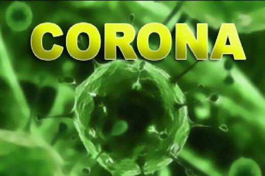 ببینید | راهکارهای سازمان بهداشت جهانی برای پیشگیری از ابتلا به ویروس کرونا