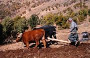 ثبت ۶ اثر ناملموس کردستان در فهرست آثار ملی
