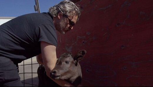 اقدام نمادین بازیگر برنده اسکار «جوکر» در کشتارگاه