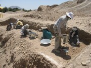 کاوشهای باستان شناسی از سال آینده در فارس