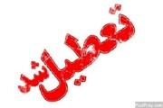 مدارس استان همدان تا پایان هفته تعطیل شد
