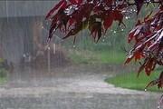 پیشبینی بارش شدید برف و باران در قزوین