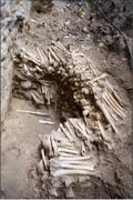 دیوار ساخته شده با استخوان انسان؛ جاذبه گردشگری شد