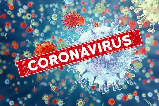 Coronavirus death toll mounts to 19 in Iran