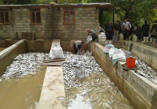 ۲۵۰۰ مسکن روستایی در نهاوند از سیلاب های اخیر آسیب دیدند