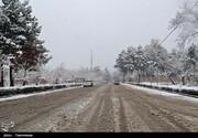 برف و باران جاده چالوس را صعبالعبور کرد