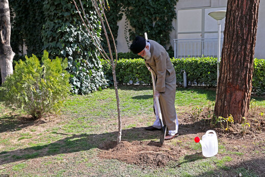 Leader plants two saplings on National Arbor Day