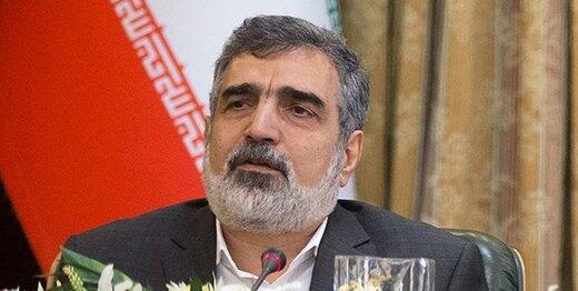 کمالوندی:تا دو سال آینده در تعمیرات نیروگاه اتمی بوشهر بینیاز میشویم/روسیه ۳۸ تن سوخت به نیروگاه بوشهر داده است