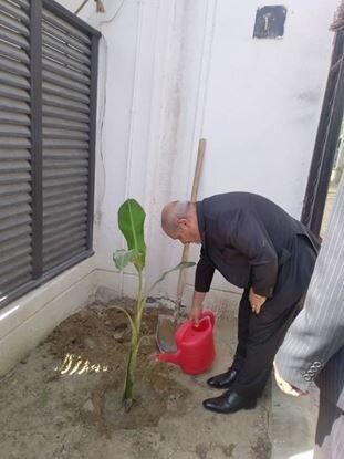 کاشت ۱۰ هزار اصله درخت در نیمه دوم سال جاری