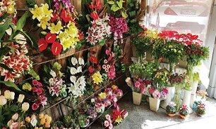 کاهش ۵۰ درصدی قیمت گل/ خرید گل ۷۰ درصد افت کرد