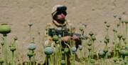 آمریکا از کاهش نیروهای نظامی در افغانستان خبر داد