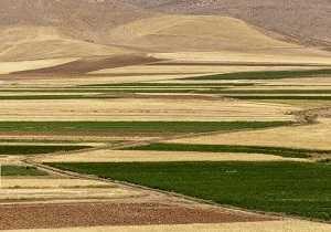 در سیزدهمین جلسه کمیسیون طرح های کشاورزی و تولیدی استان کردستان