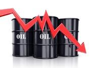 واقعیت های بازار نفت و درآمد ایران از فروش نفت و محصولات پتروشیمی