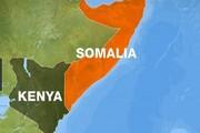 کرونا به سومالی رسید