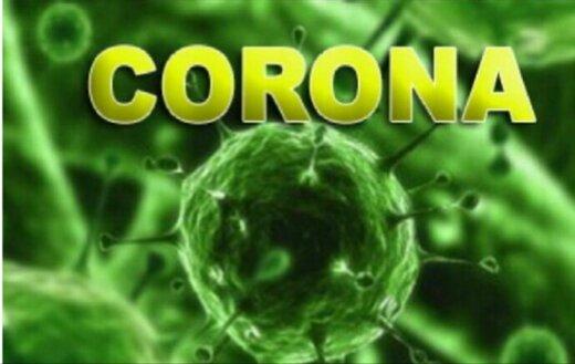 ببینید | آیا سشوار گرفتن در مجرای بینی ویروس کرونا را می کشد؟