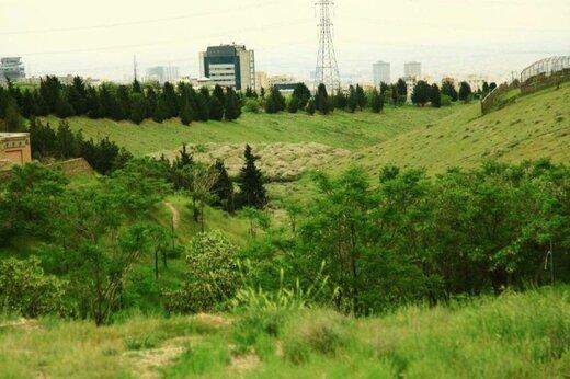 پارک طبیعت پردیسان «خودرو ممنوع» شد