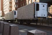ببینید | انتقال جنازههای بیماران کرونایی به کانتینرهای یخچالدار در نیویورک