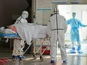 تعداد بیماران مبتلا به کرونا در کرمان به ۲۶۰ نفر رسید