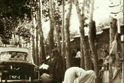 تصویری تاریخی از سیزده بدر مردم تهران در شمیران در دهه ۴۰ شمسی