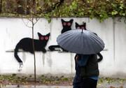 کمترین و بیشترین بارشها متعلق به کدام مناطق کشور است؟
