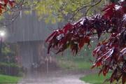ببینید | آسمان تهران تگرگ باران شد